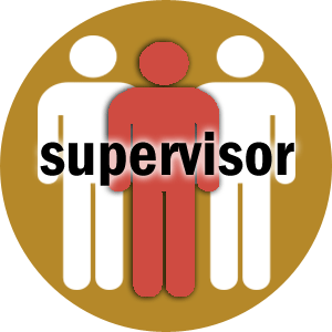 supervaizor